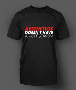 Aesthetics Burnout T-Shirt